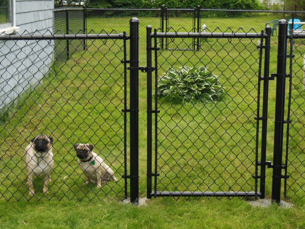 black-vinyl-chain-link-fence.fw